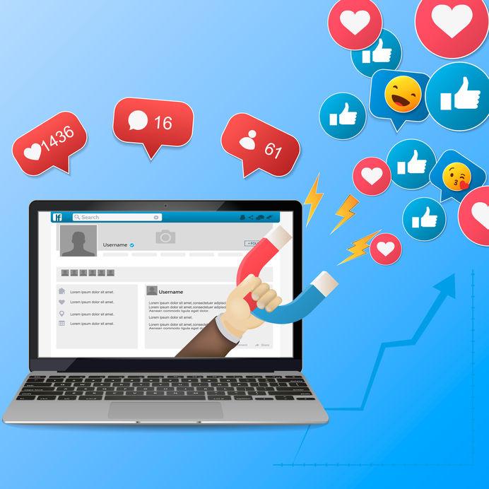 social media management services in Bellingham, WA